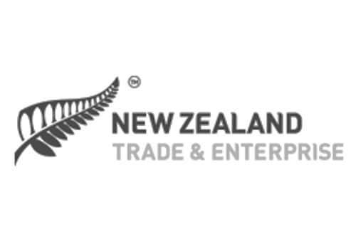nz trade enterprise business plan
