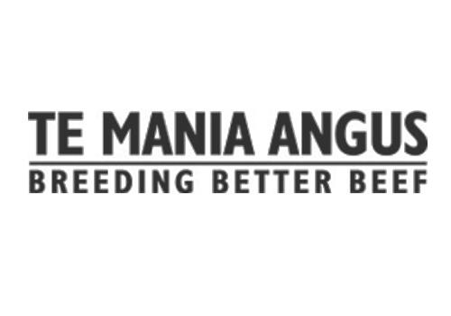 Te Mania Angus